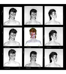 Brian Duffy - David Bowie,...
